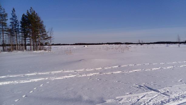 湖上のクロカンコース