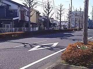 misao1-52.jpg