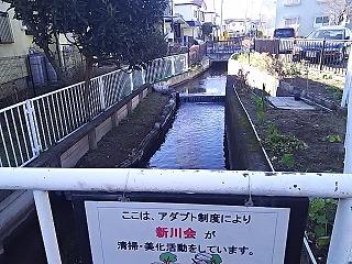 misao1-53.jpg