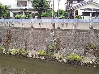 misawa-nuno33-1.jpg
