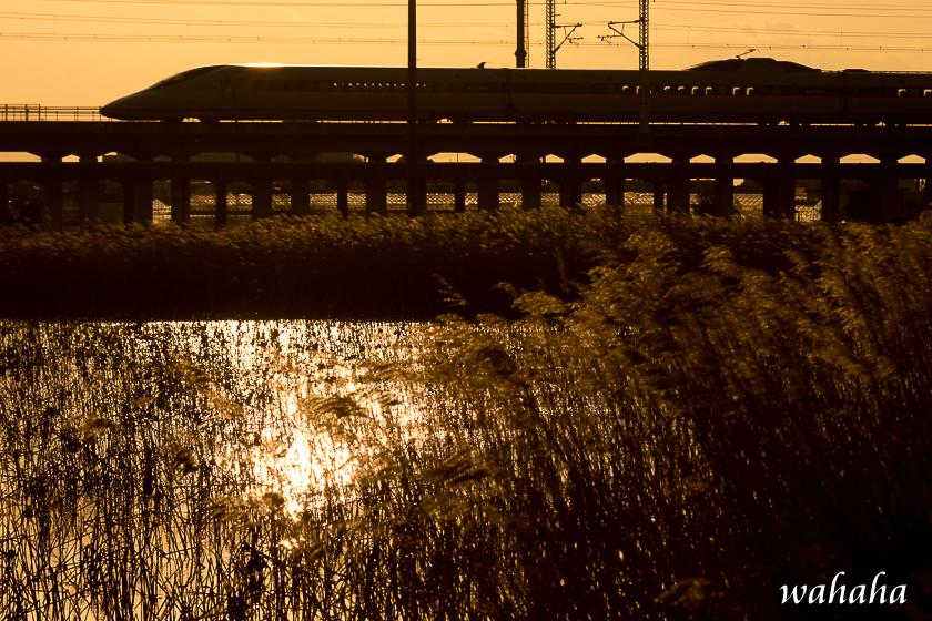 300217kanagasaki-2.jpg