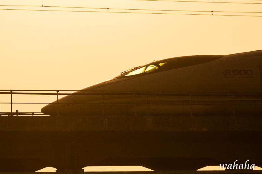 300220kanagasaki-1.jpg