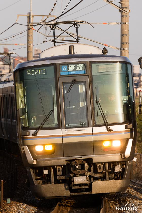 300324uozumi-1.jpg