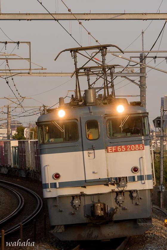 300324uozumi-2.jpg