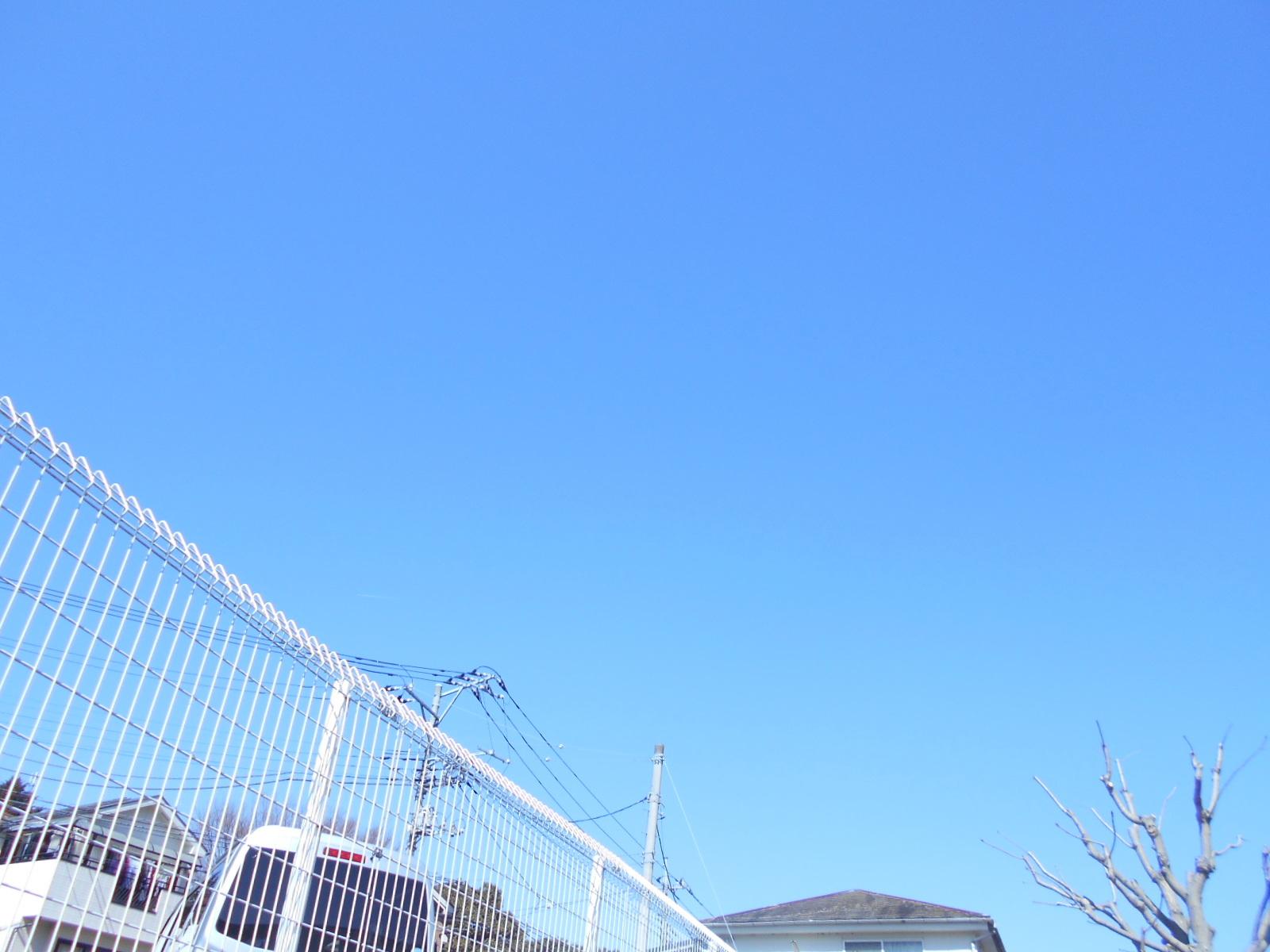 DSCN8606.jpg