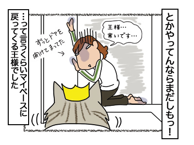 02032018_cat10.jpg