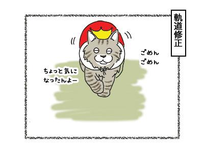 02032018_cat5.jpg