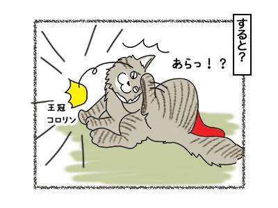 02032018_cat8.jpg