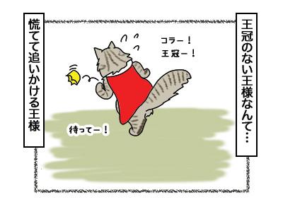 02032018_cat9.jpg
