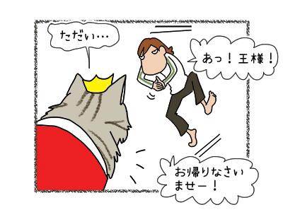 02042018_cat1.jpg