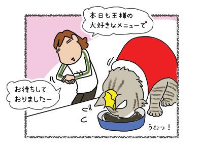 02042018_cat2.jpg