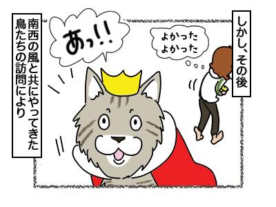 03082018_cat5.jpg