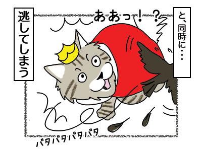 05032018_cat2.jpg