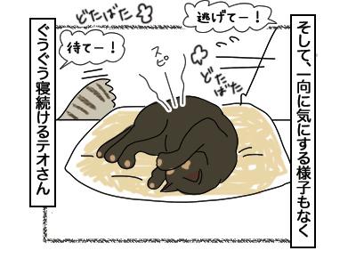 05032018_cat5.jpg