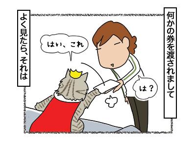 06032018_cat3.jpg