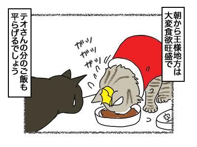 08032018_cat1.jpg