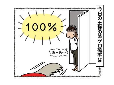 08032018_cat7.jpg