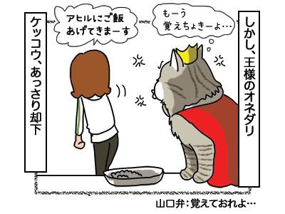 13032018_cat2.jpg
