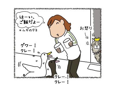 13032018_cat3.jpg