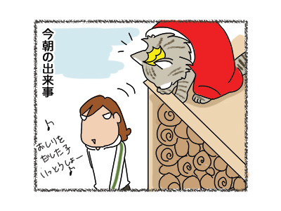 16032018_cat1.jpg