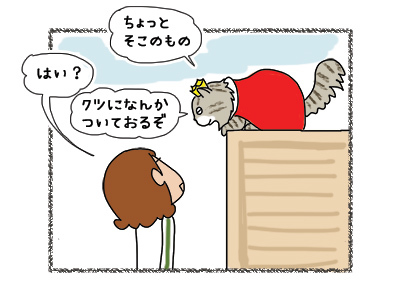 16032018_cat2.jpg