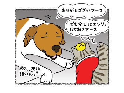 19032018_cat4.jpg
