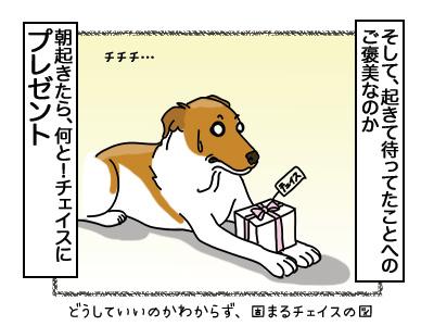 19032018_cat8.jpg