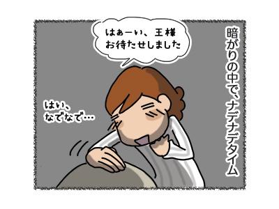 21032018_cat3.jpg