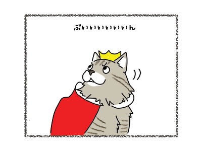 28022018_cat2.jpg