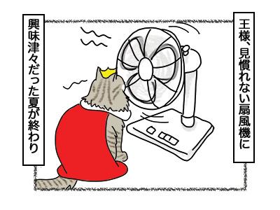 28022018_cat3.jpg