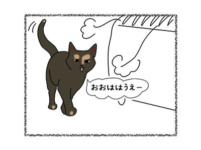 28022018_cat4.jpg