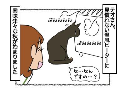 28022018_cat6.jpg