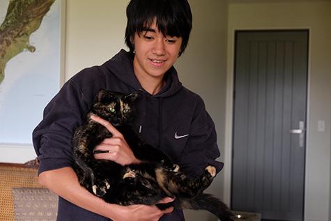 30032018_cat2.jpg
