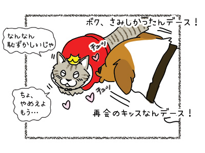 31032018_cat2.jpg