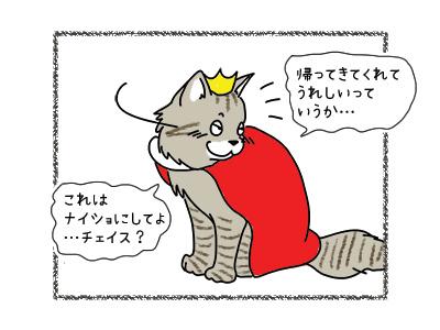 31032018_cat4.jpg