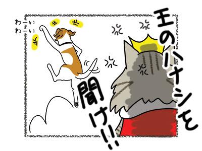31032018_cat5.jpg