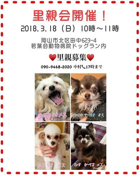 2018-3-18-satooyakai.jpg