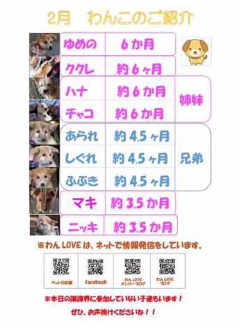 fc2blog_2018021600363733b.jpg