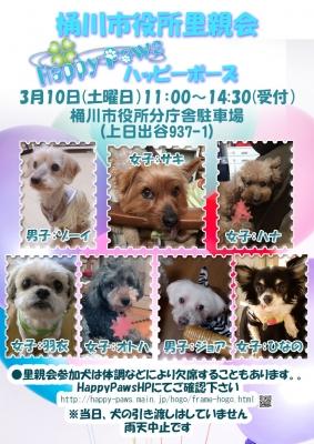 180310桶川dog
