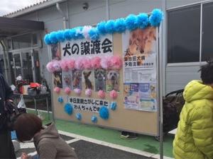 okegawa-2.jpg
