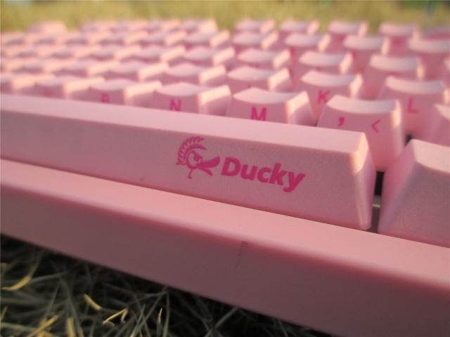 3108_PBT_Pink_08.jpg