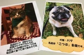 小倉昭和館に寄せられた応募写真の一例.jpg
