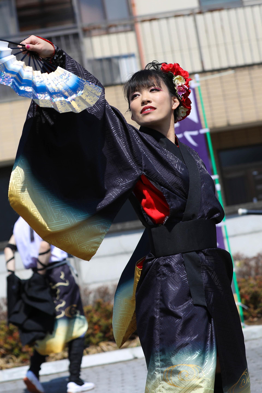 よさこいかぬまフェスティバル.jpg