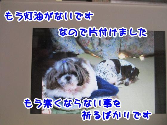 0322-04_2018032218430409e.jpg
