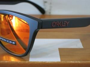Oakley18Frogskins12