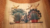 エジプト草と鳥