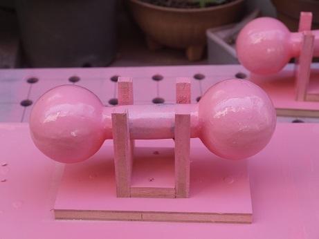 P3130024 ピンク完了