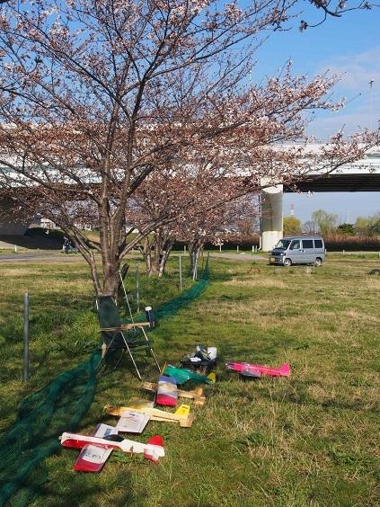 P1010038 桜の花の下でマイプレーン