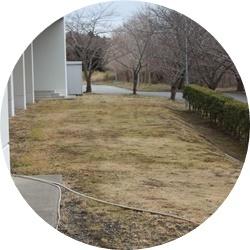 ⑦体育館脇コース