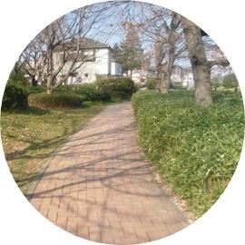 2番 緑道